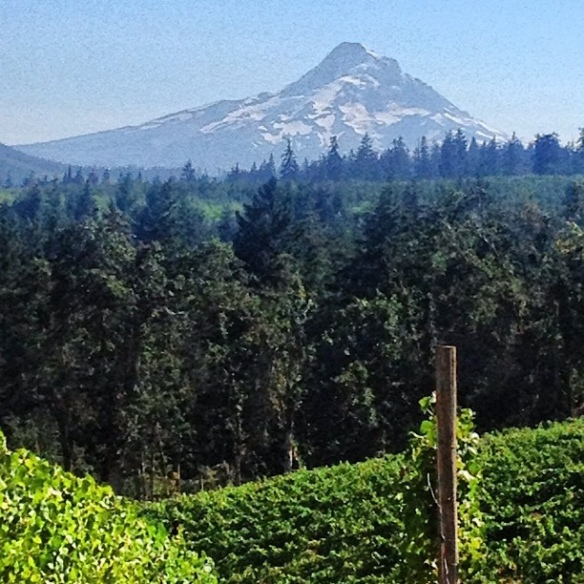 Columbia River Gorge Wineries