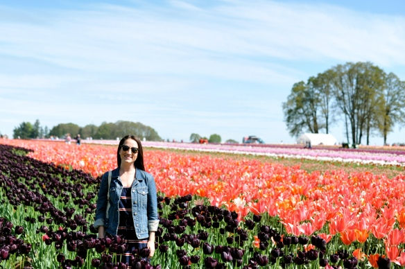 Wooden Shoe Tulip Farm, OR