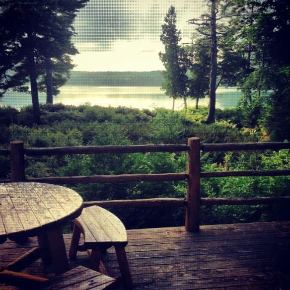 view from our log cabin